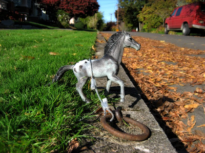 Plastic horse tied to the curb