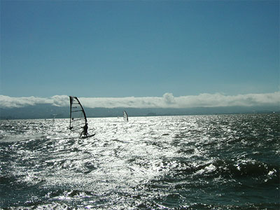 windsurfers off Coyote Point, San Francisco Bay, California