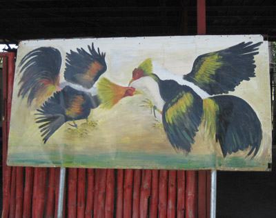 cock fight painting, Panama