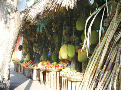Fresh fruit at the Juice Bar, Huatulco, Oaxaca, Mexico