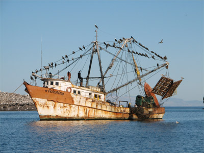 Shrimp Boat, Sea of Cortez, Mexico