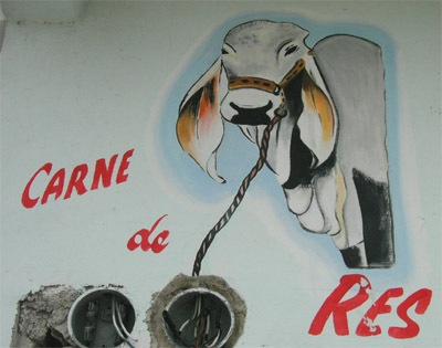 Hand Painted sign. Carne de Res. Tulum, Quintana Roo, Mexico