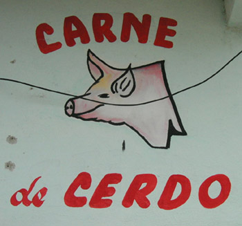 Hand Painted sign, Carne de Cedro, Valladolid, Yucatan, Mexico
