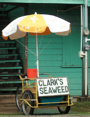Hand Painted Sign. Clarks Seaweed. Dangriga Town, Belize
